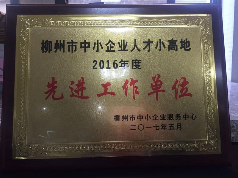 柳州市中小企业人才小高地先进工作单位